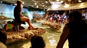 Aquarium (30)