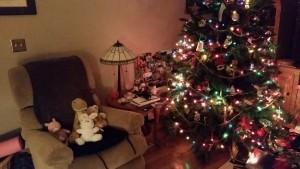 Holidays 2015 (41)