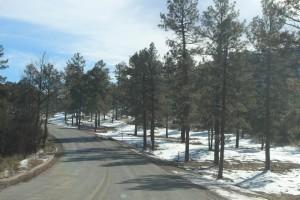 Cam. Santa Fe Part 2 (208)