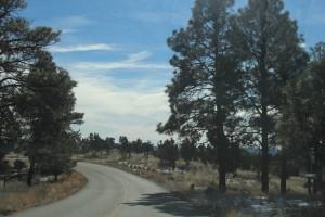 Cam. Santa Fe Part 2 (213)