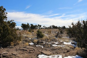 Cam. Santa Fe Part 2 (215)