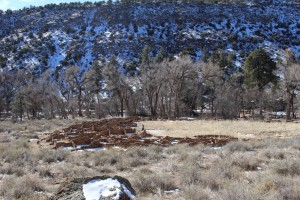 Cam. Santa Fe Part 2 (227)