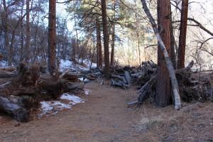 Cam. Santa Fe Part 2 (266)