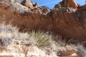 Cam. Santa Fe Part 2 (290)