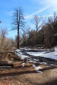 Cam. Santa Fe Part 2 (296)
