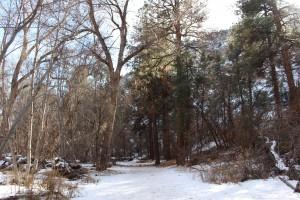 Cam. Santa Fe Part 2 (297)