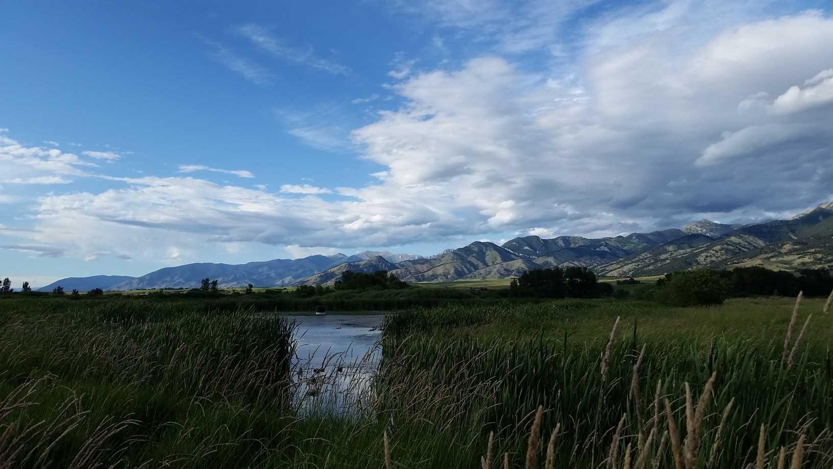 Bozeman Check-in #6 (Montana Life)